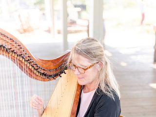 Kim Perkins Charleston Harpist 1