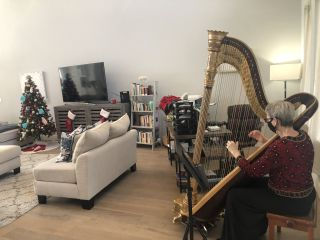 The Elegant Harp 3