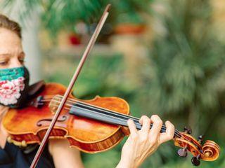 The Vanderbilt Strings 1