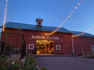 BLENHEIM HILL FARM 2