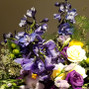 Flowers By Faye 13