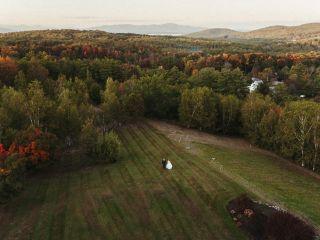Birch Hill Farm 2
