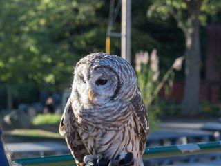 Connecticut's Beardsley Zoo 4