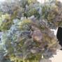 WholeBlossoms.com 48