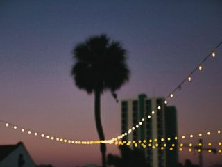 Tampa Lights 7