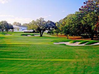 Ocala National Golf Club 4