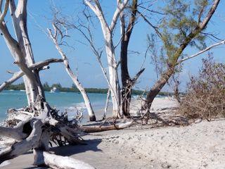 Palm Island Resort 3