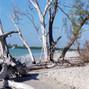 Palm Island Resort 19