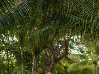 Caribephoto 4