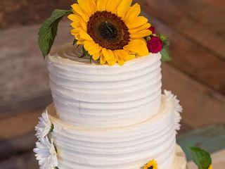 Paisley Cakes 7