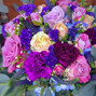 Lilybird Flower 9
