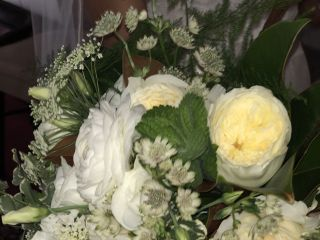 Roots Floral Company 6