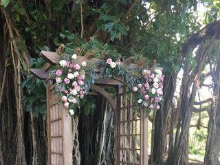 Flamingo Gardens 2