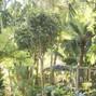 Sunken gardens 26