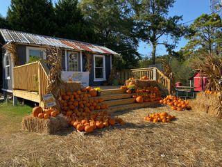 Alegre Farm 2