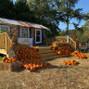 Alegre Farm 15