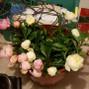WholeBlossoms.com 17