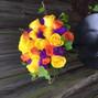 Breitinger's Flowers 5