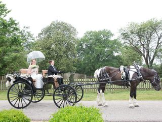 Arrivals In Elegance Horse Drawn Carriage Services, LLC 4