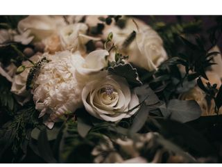 Carolina Roses 5