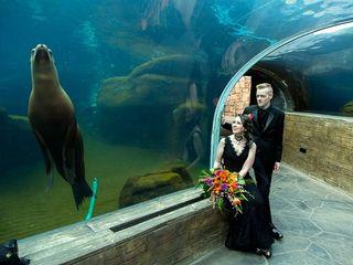 Saint Louis Zoo 7