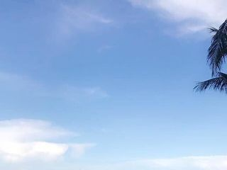 Pelican Grand Beach Resort 6