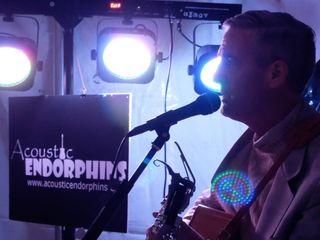 Acoustic Endorphins 1