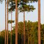 Magnolia Green Golf Club 10
