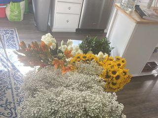 Whole Blossoms 3