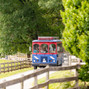 Crozet Trolley Company 8