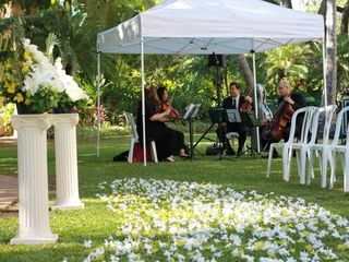 Oahu Strings 3