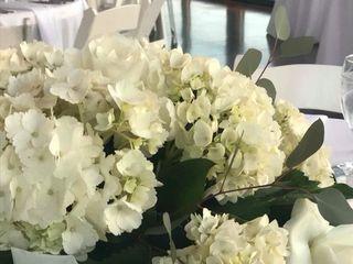 Belles Fleurs 6