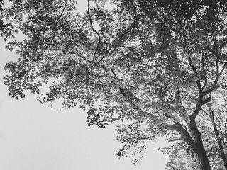 Nina Lily Photography 3