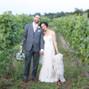 Sanctuary Vineyards 13