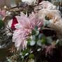 LeRoy's Flowers 8