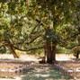 Mount Pisgah Arboretum 28