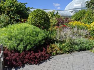The New York Botanical Garden 6