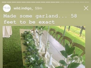 Wild Indigo 2
