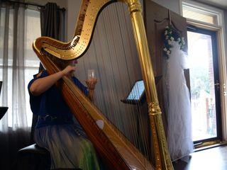 Chanah Ambuter, Michigan Harpist 7