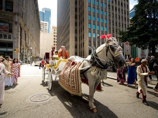 Carriage Limousine Service - Horse Drawn Carriages 3