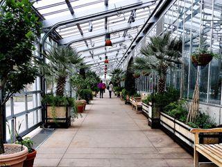 Denver Botanic Gardens and Chatfield Farms 1