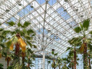 The Crystal Gardens 2