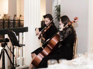 Violin Vita 5