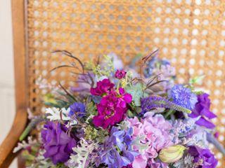 Strelitzia Flower Company 2