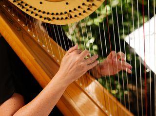 Monica Smith - Harpist 1