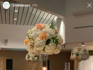 Diva Blooms 5