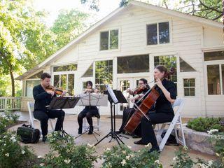 Terra Vista Strings 3