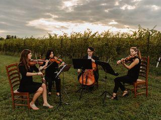 Camden String Quartet 1