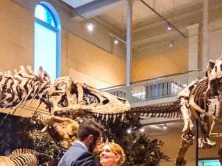Carnegie Museums of Pittsburgh in Oakland 2