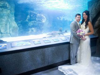 Newport Aquarium 7